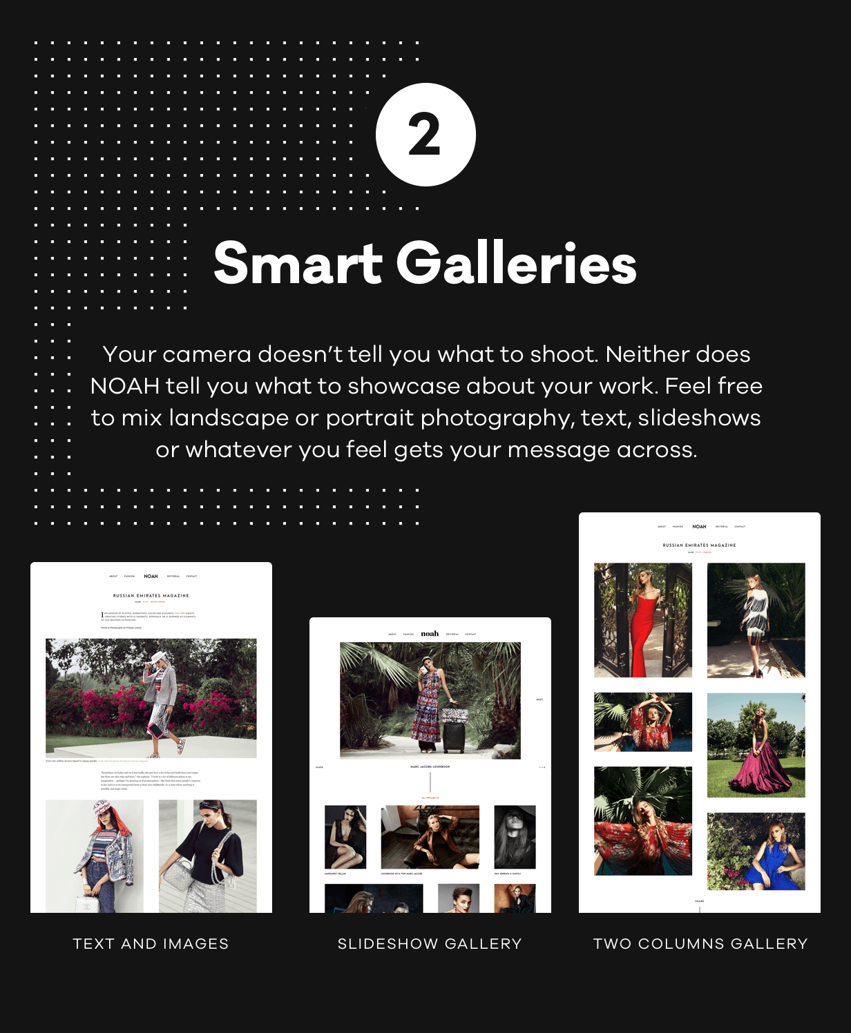 NOAH - A Witty Photography WordPress Theme - 3