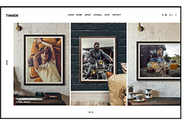 TIMBER – An Unusual Photography WordPress Theme - 5