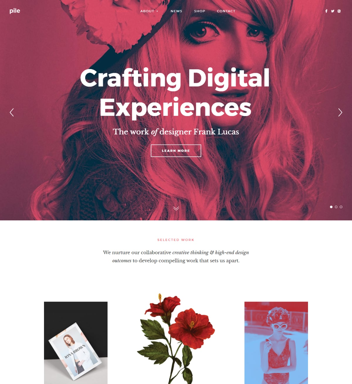 Pile A flexible portfolio WordPress theme Desktop View