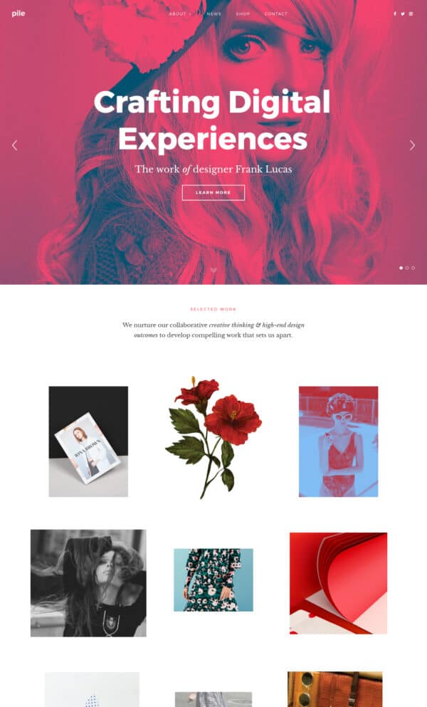Pile a portfolio WordPress theme