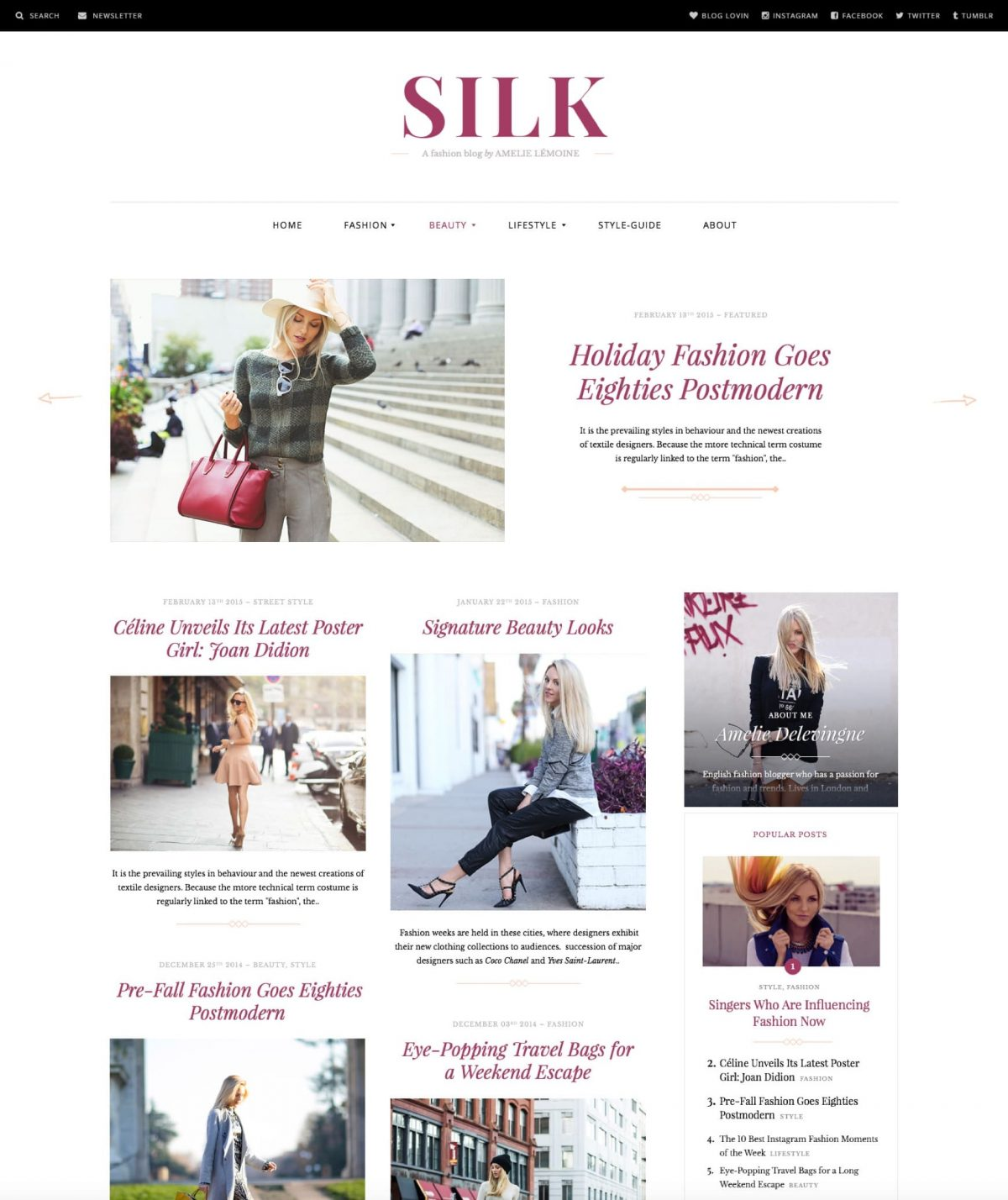 Silk fashion blog WordPress theme Desktop View
