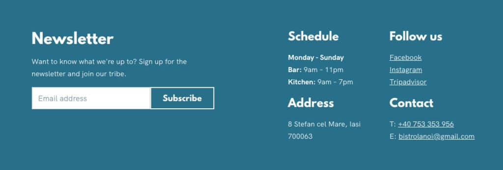 Footer focused on getting newsletter subscribers